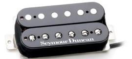 Seymour Duncan personalizētie skaņas noņēmēji