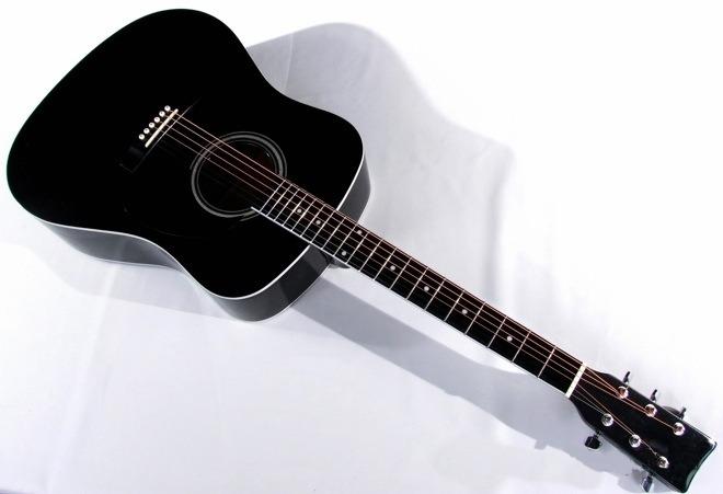 MSA_gitara_CW170