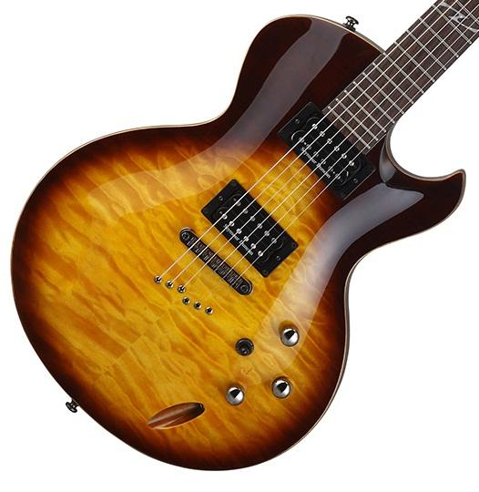 Cort_Z1_Custom_guitar_body