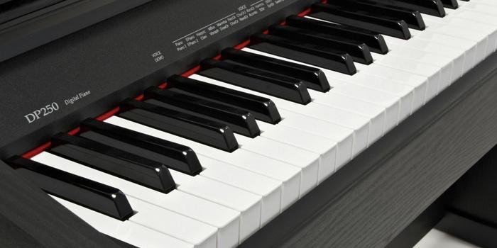 Medeli_DP250_klavieres