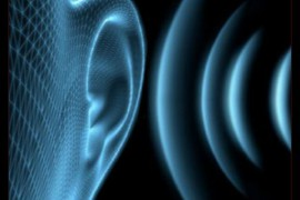 Muzikālās dzirdes treniņš