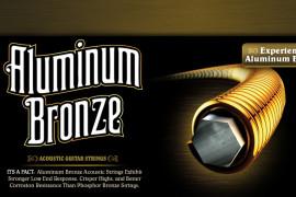 Ernie Ball Aluminium Bronze stīgas