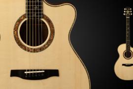 PRS atklāj SE Alex Lifeson Thinline akustisko ģitāru