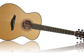 Mayson akustiskā ģitāra MS5/S