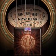 D'Addario laiž klajā Nickel Bronze akustisko ģitāru stīgas