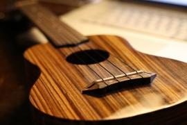 Kā izvēlēties ukuleli – galvenās iezīmes, tipoloģija un pielietošana