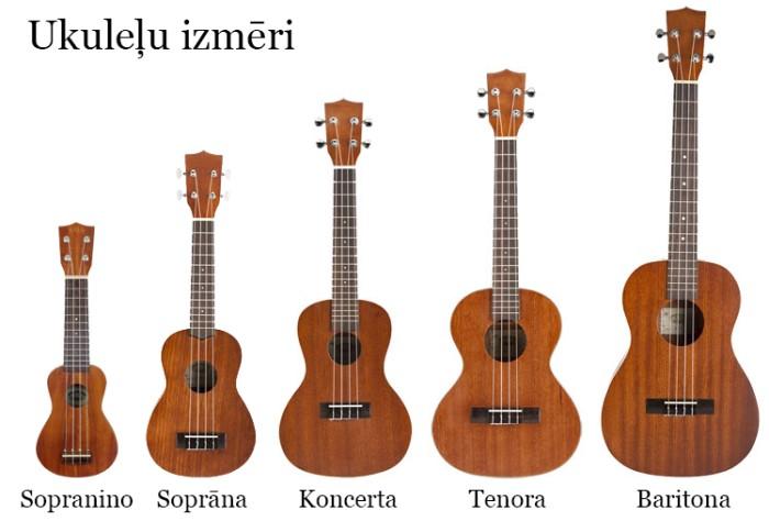 ukulelu-izmeri